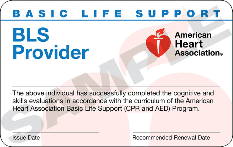 american heart association healthcare provider bls cpr aed online ...