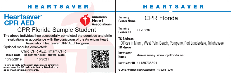 cpr florida heartsaver american heart card